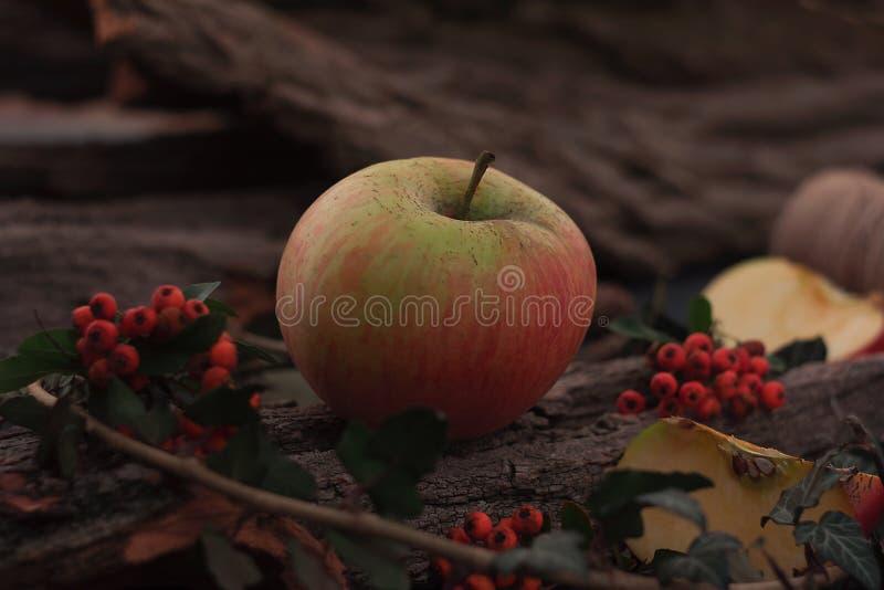 Ώριμα νόστιμα μήλα στον ξύλινο πίνακα στοκ εικόνες με δικαίωμα ελεύθερης χρήσης