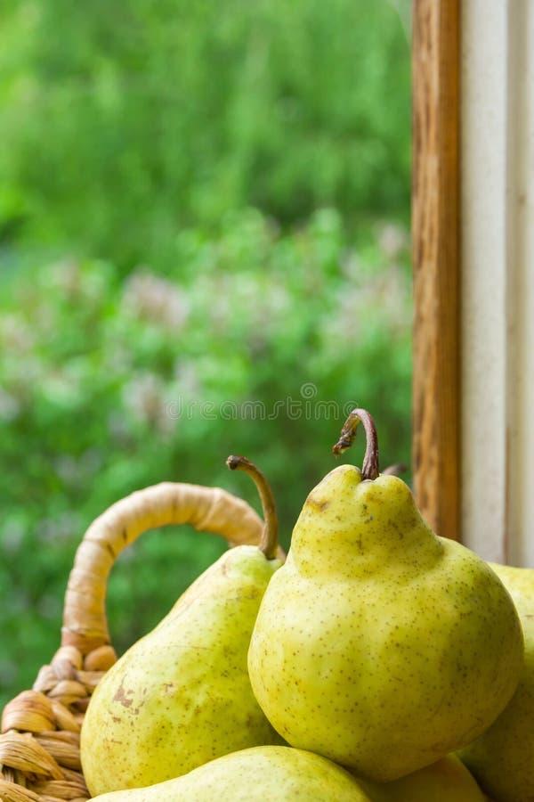 Ώριμα οργανικά κίτρινα αχλάδια στο ψάθινο καλάθι από το εκλεκτής ποιότητας ξύλινο παράθυρο Πρασινάδα κήπων στο υπόβαθρο Καλοκαίρι στοκ εικόνα