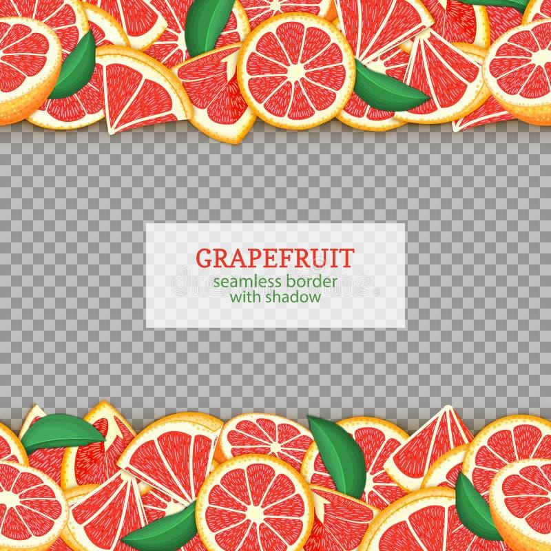 Ώριμα οριζόντια άνευ ραφής σύνορα φρούτων γκρέιπφρουτ Διανυσματική ευρεία και στενή ατελείωτη λουρίδα καρτών απεικόνισης με το κό διανυσματική απεικόνιση