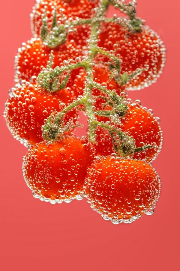 Ώριμες κόκκινες ντομάτες κερασιών στοκ εικόνες με δικαίωμα ελεύθερης χρήσης