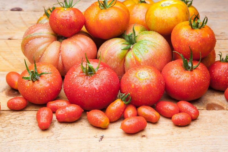 Ώριμη ντομάτα στο ξύλινο υπόβαθρο στοκ φωτογραφία με δικαίωμα ελεύθερης χρήσης