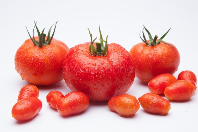 Ώριμη ντομάτα στο ξύλινο υπόβαθρο στοκ φωτογραφίες με δικαίωμα ελεύθερης χρήσης