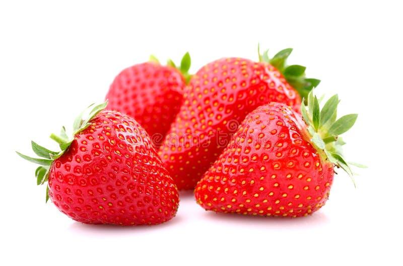 ώριμη φράουλα στοκ φωτογραφία με δικαίωμα ελεύθερης χρήσης