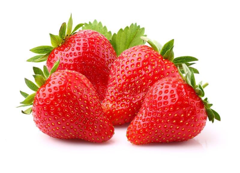 ώριμη φράουλα στοκ φωτογραφίες με δικαίωμα ελεύθερης χρήσης