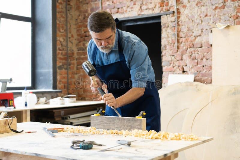 Ώριμη όμορφη εργασία ξυλουργών στην ξυλουργική Είναι επιτυχής επιχειρηματίας στον εργασιακό χώρο του στοκ εικόνες με δικαίωμα ελεύθερης χρήσης