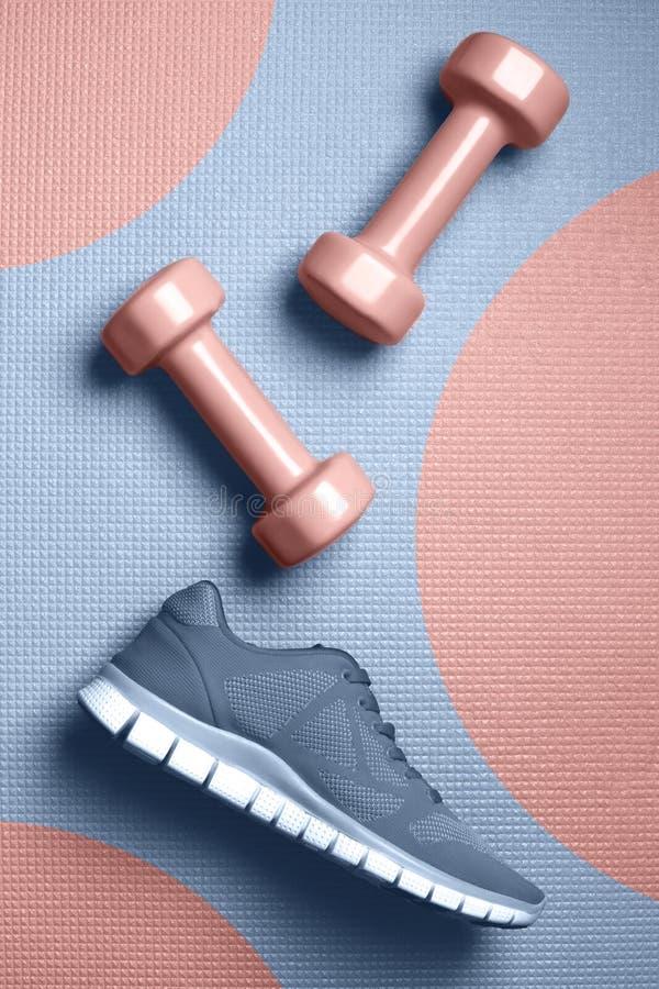 Ώριμος αυξήθηκε αλτήρες χρώματος και τα πάνινα παπούτσια χρώματος Skyway στο επίπεδο χαλιών βρέθηκαν στοκ φωτογραφίες με δικαίωμα ελεύθερης χρήσης