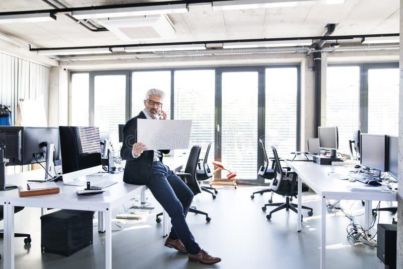 Ώριμος επιχειρηματίας στο γραφείο που κάνει ένα τηλεφώνημα στοκ εικόνες με δικαίωμα ελεύθερης χρήσης