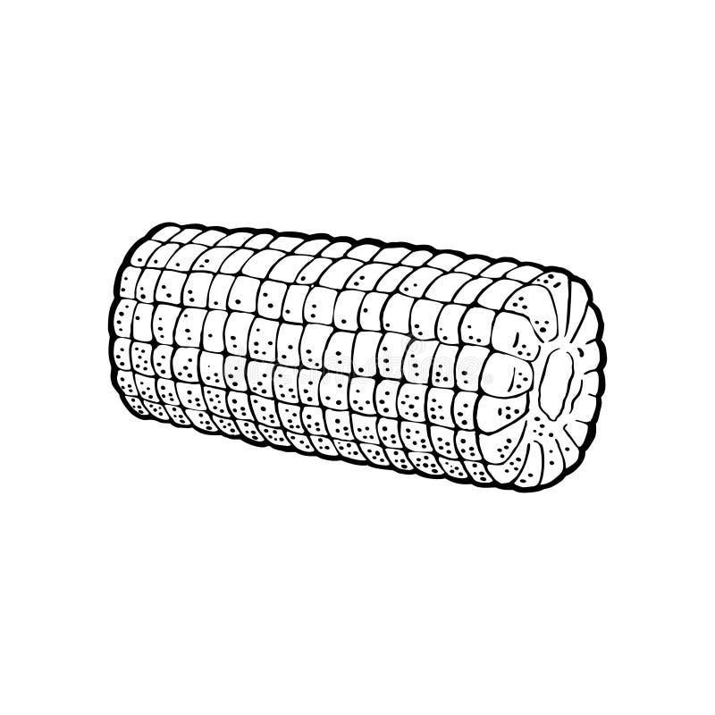 Ώριμος σπάδικας του καλαμποκιού που ξεφλουδίζεται από τα φύλλα Διανυσματική εκλεκτής ποιότητας χάραξη ελεύθερη απεικόνιση δικαιώματος