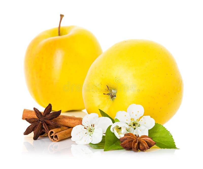 Ώριμο κίτρινο μήλο με τα ραβδιά κανέλας, το αστέρι γλυκάνισου και τα λουλούδια μήλων στοκ φωτογραφία