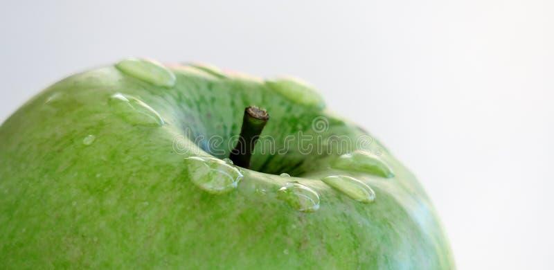 Ώριμο πράσινο μήλο σε ένα άσπρο υπόβαθρο με τις πτώσεις του νερού μετά από τη βροχή στοκ φωτογραφίες με δικαίωμα ελεύθερης χρήσης