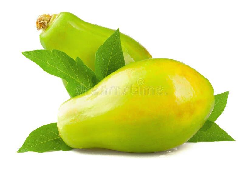 Ώριμο papaya με τα φύλλα στο άσπρο υπόβαθρο στοκ φωτογραφία με δικαίωμα ελεύθερης χρήσης