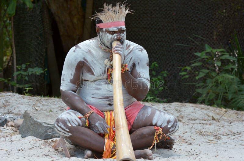 Аборигенная выставка культуры в Квинсленде Австралии стоковая фотография