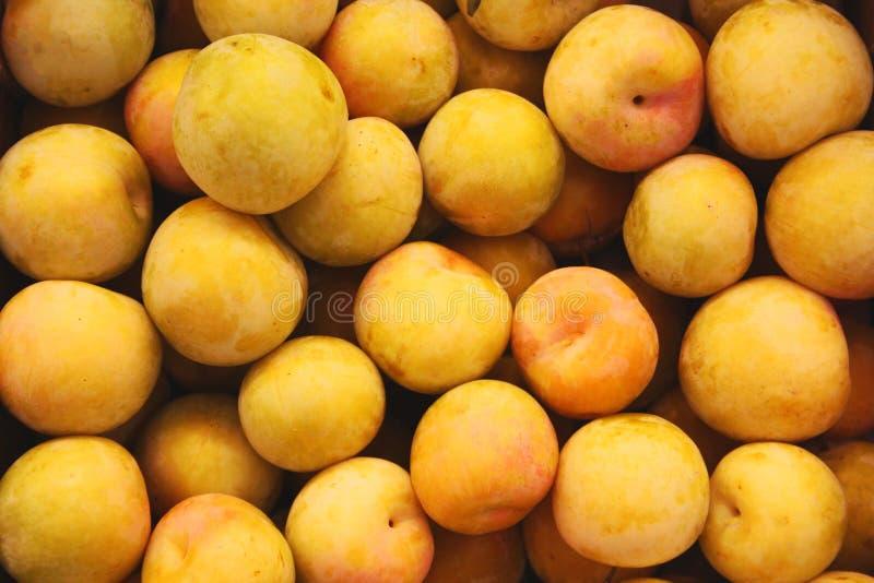 Абрикосы на рынке стоковое фото