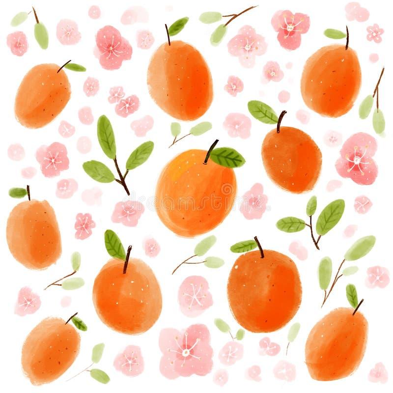 Абрикосы руки вычерченные и розовые цветки персиков Предпосылка сбора, естественные вкусные зрелые плоды бесплатная иллюстрация