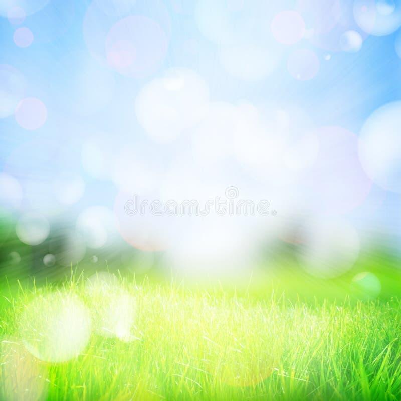 абстрактная весна природы предпосылки стоковое изображение rf