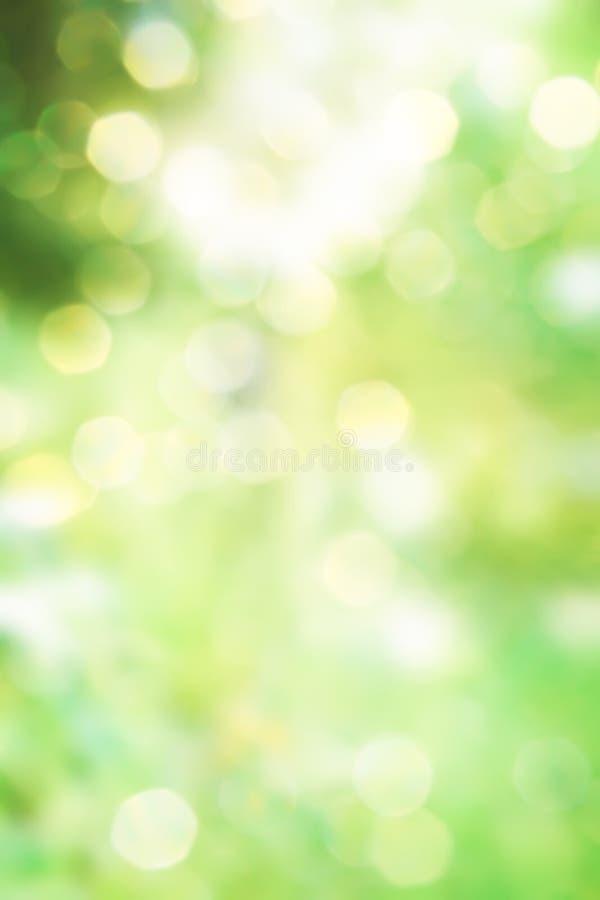 Абстрактная зеленая предпосылка природы весны стоковое изображение
