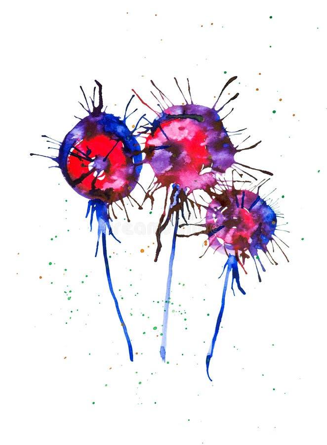 Абстрактная иллюстрация акварели ярких multicolor одуванчиков изолированных на белой предпосылке иллюстрация вектора