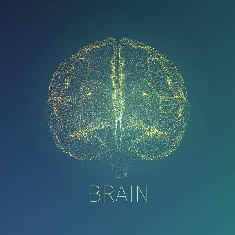 Абстрактная иллюстрация вектора мозга Взгляд рентгеновского снимка внутри головы Знамя неврологии иллюстрация штока