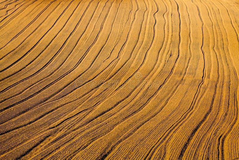 Абстрактная картина полей стоковые фото