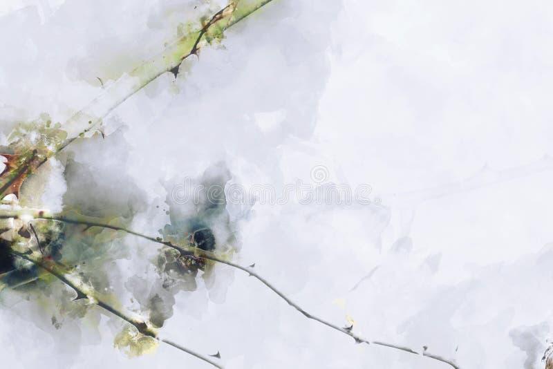 Абстрактная картина розовых ветвей с тернием, цифровая картина акварели акварели иллюстрация штока