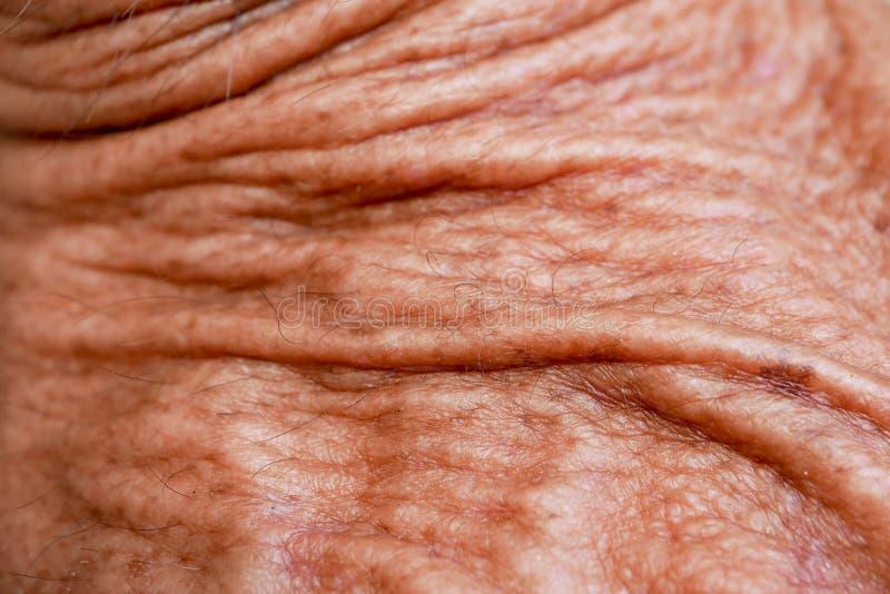 Абстрактная кожа старика текстуры предпосылки стоковое фото