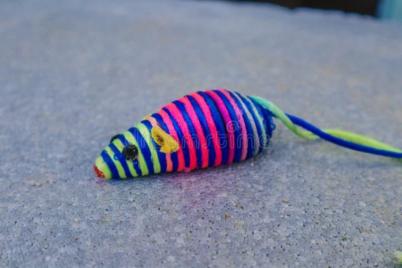 абстрактная мышь стоковая фотография rf