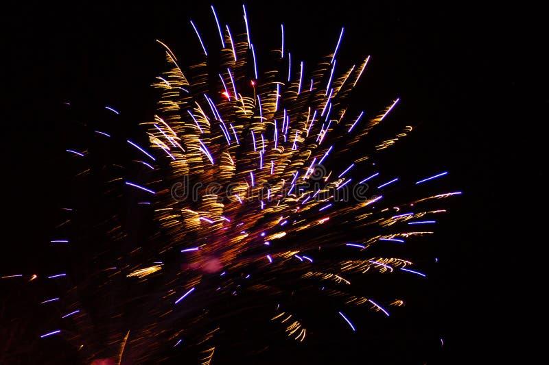 Абстрактная предпосылка: Золотые, фиолетовые и красные фейерверки Featherduster стоковая фотография rf