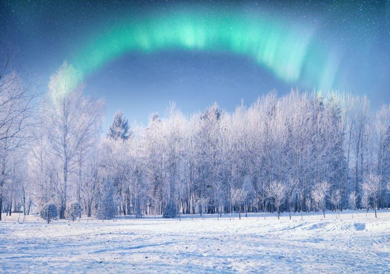 абстрактная предпосылка освещает северный вектор стоковая фотография rf