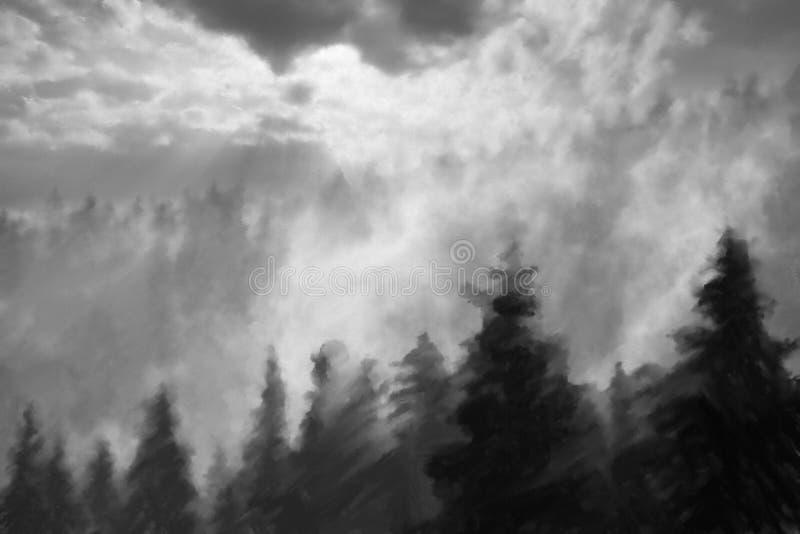 Абстрактная предпосылка соснового леса стоковая фотография