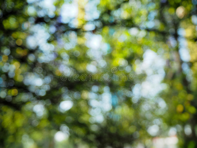 абстрактная природа предпосылки стоковые фото