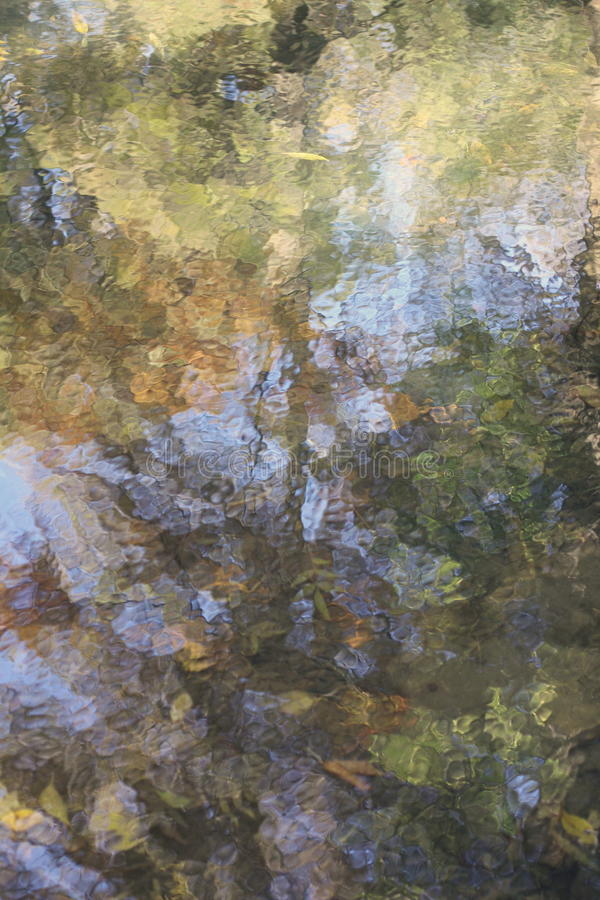 Абстрактная природа стоковое изображение