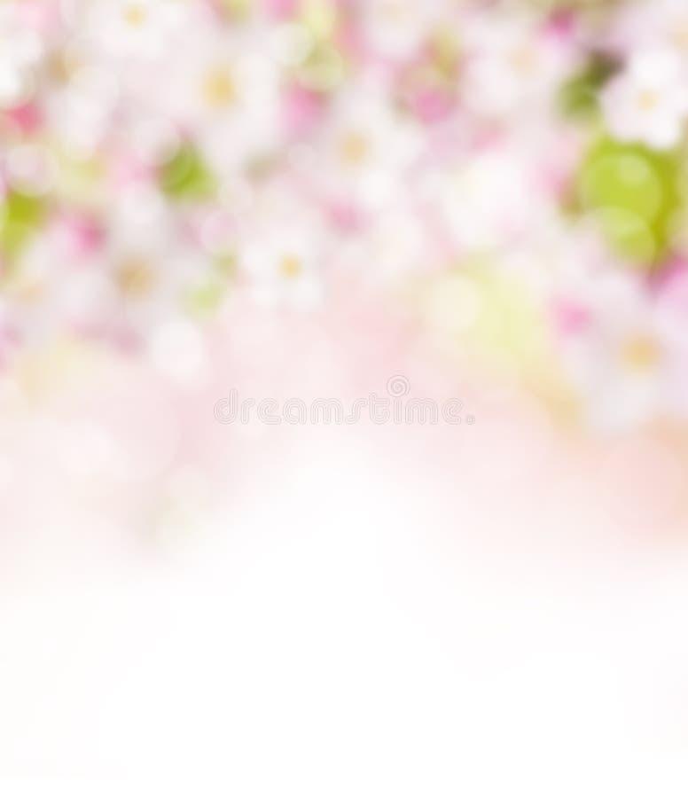 Абстрактная расплывчатая предпосылка весны бесплатная иллюстрация
