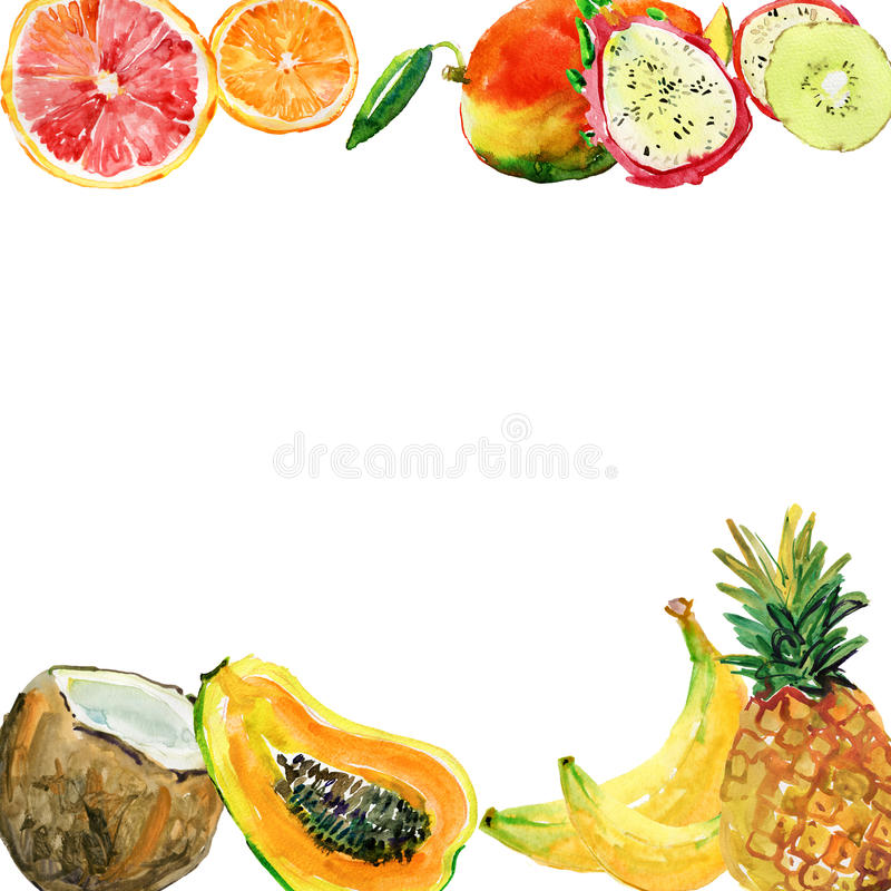 Абстрактная рука акварели покрасила предпосылки с тропическими плодоовощами, иллюстрация вектора