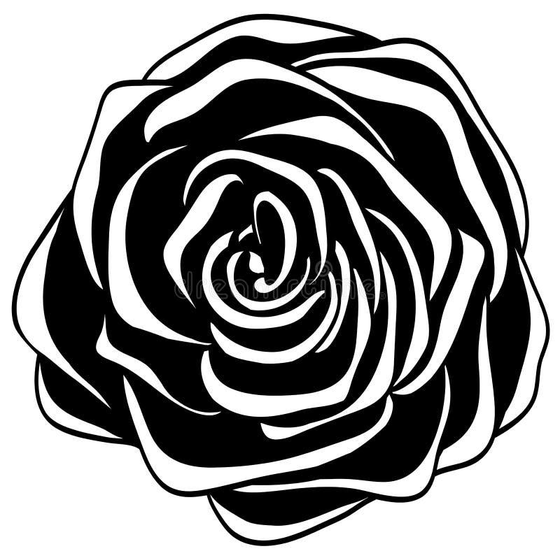 Абстрактная светотеневая роза. иллюстрация вектора