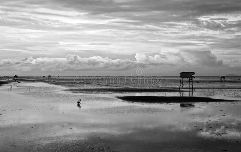 Абстрактная сцена на пляже Вьетнама стоковое фото rf