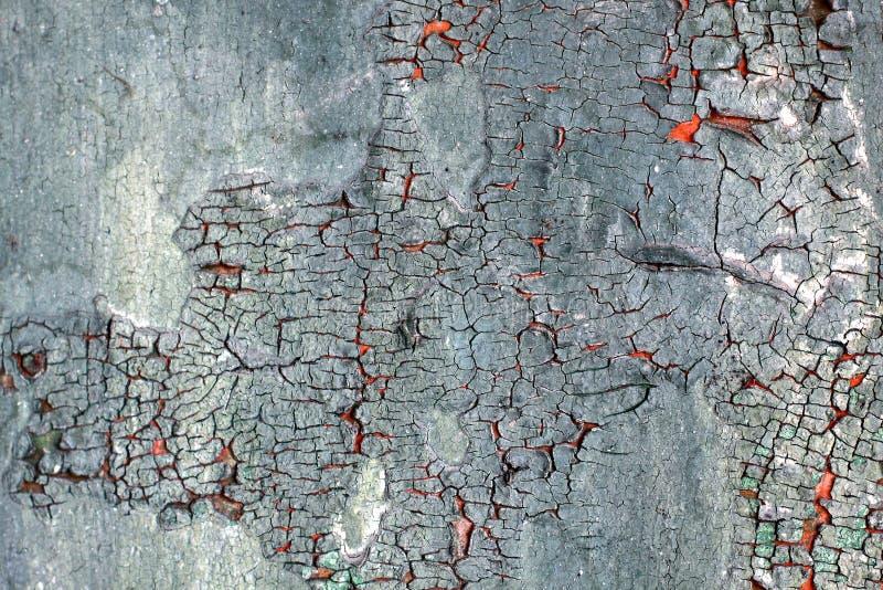 Абстрактная текстура предпосылки grunge старой краски стоковое изображение rf