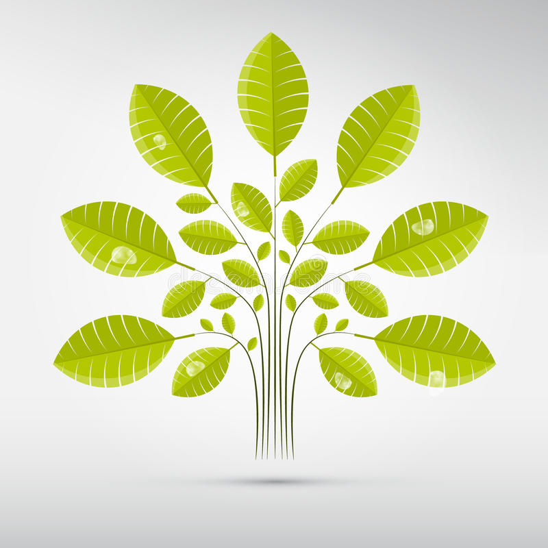 Абстрактное дерево вектора, Буш с зелеными листьями иллюстрация штока