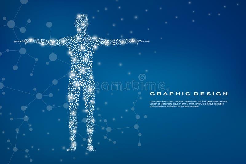 Абстрактное человеческое тело с дна молекул Медицина, концепция науки и техники также вектор иллюстрации притяжки corel иллюстрация штока