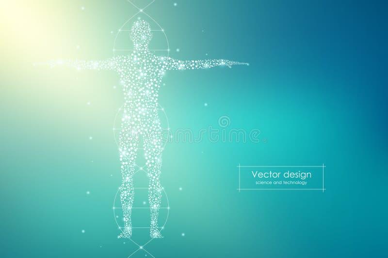 Абстрактное человеческое тело с дна молекул Медицина, концепция науки и техники также вектор иллюстрации притяжки corel иллюстрация вектора