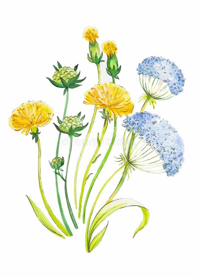 Абстрактной предпосылка искусства акварели нарисованная рукой с желтыми одуванчиками также вектор иллюстрации притяжки corel стоковое фото