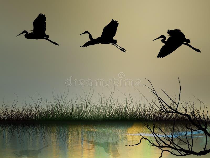 абстрактные аисты летания иллюстрация вектора