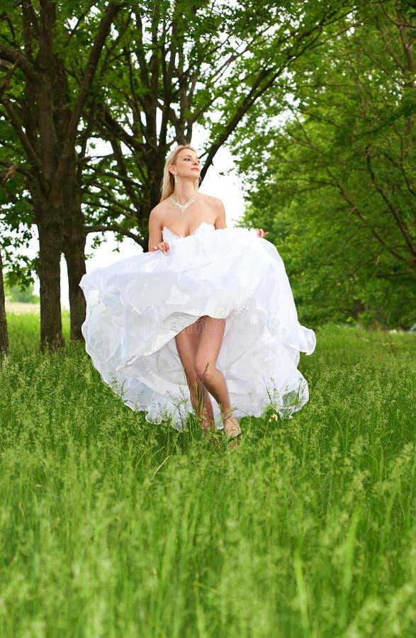 абстрактные детеныши венчания девушки платья невесты предпосылки стоковая фотография