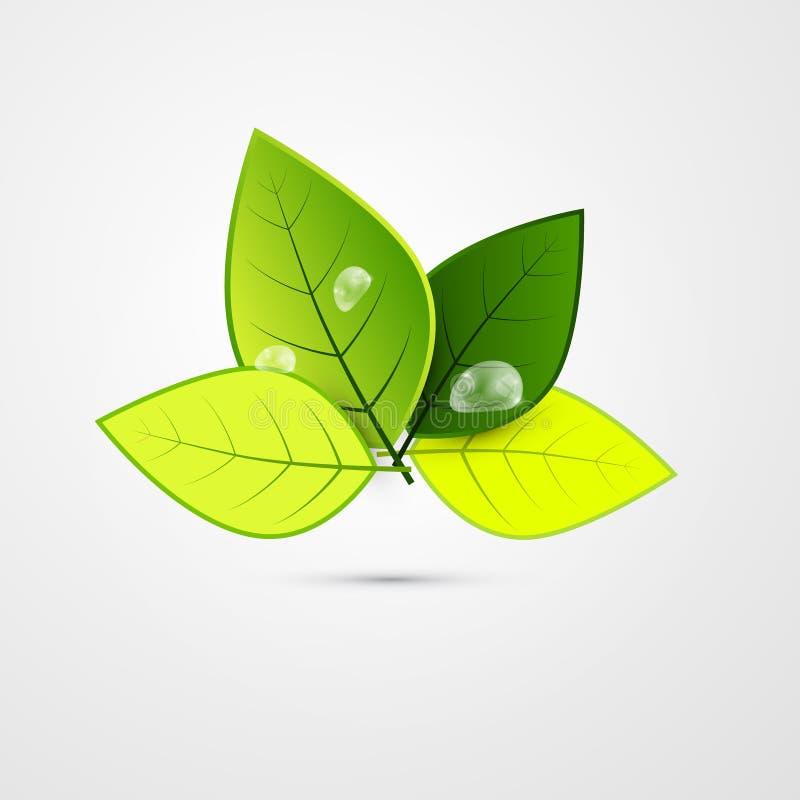 Абстрактные листья зеленого цвета 3d вектора иллюстрация вектора