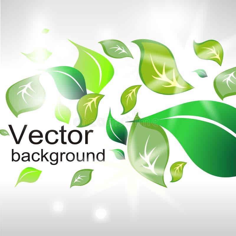 абстрактные листья зеленого цвета предпосылки иллюстрация вектора