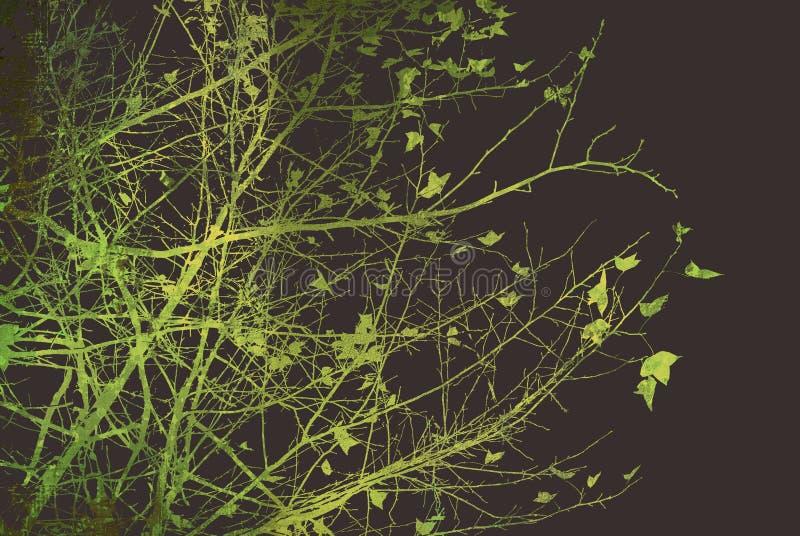 абстрактные текстуры цветка предпосылок стоковая фотография