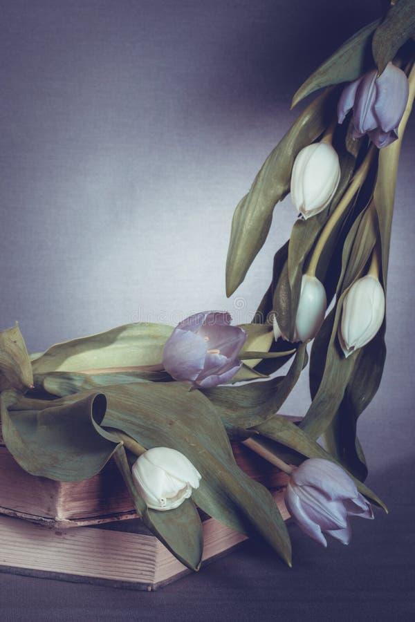 Абстрактные тюльпаны и куча книг стоковая фотография rf
