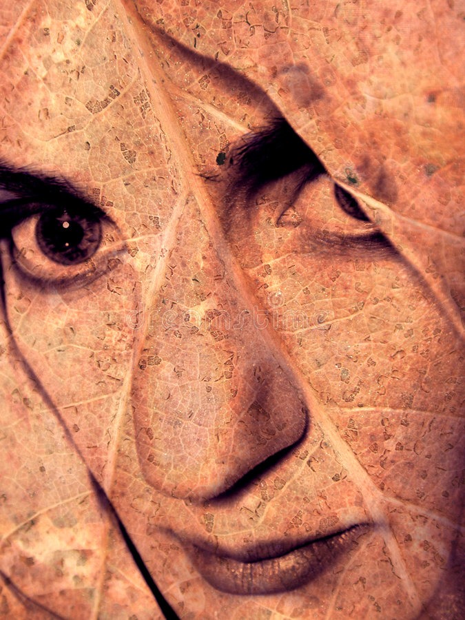 абстрактные холодные женские портреты бесплатная иллюстрация