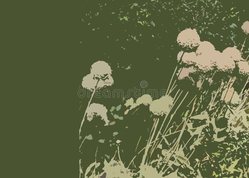 абстрактные цветки стоковое фото