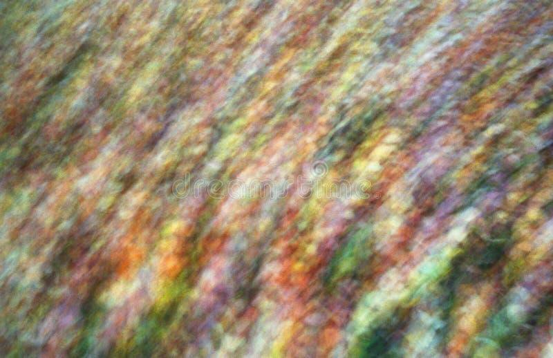 абстрактные цветы стоковое изображение