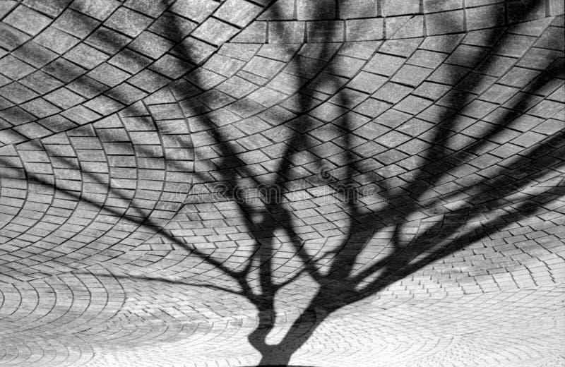 абстрактный вал тени стоковое изображение
